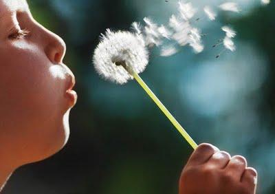 5child-blowing-dandelion1